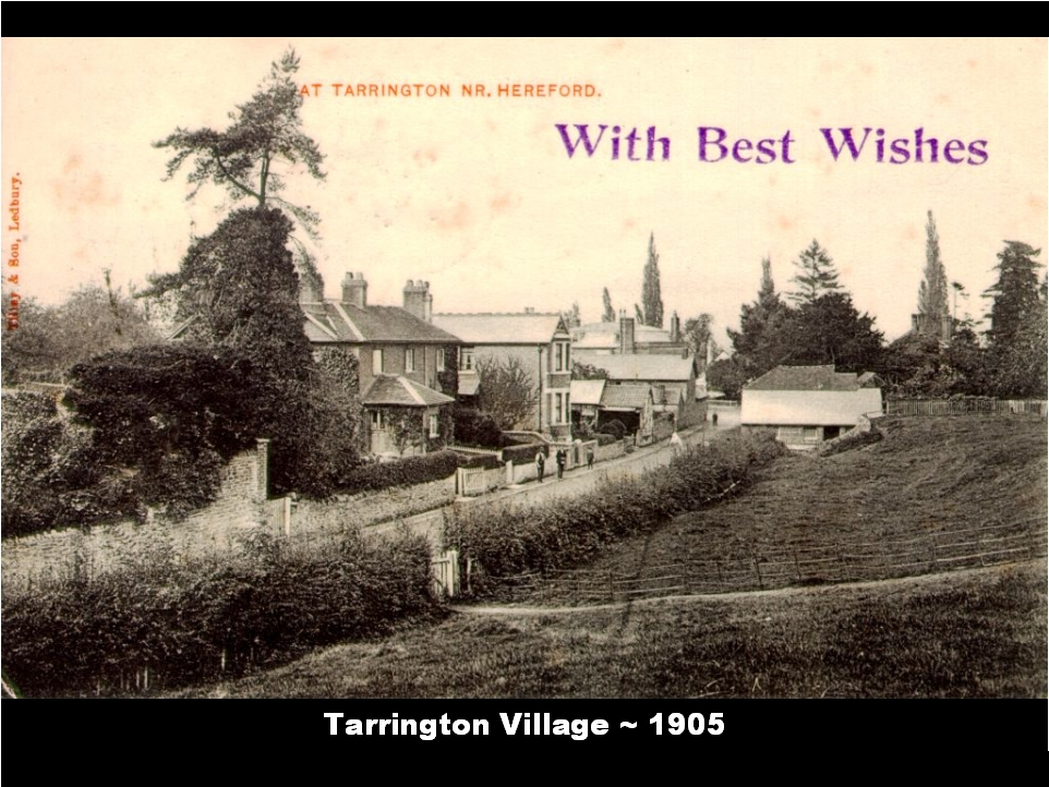 Tarrington Village 1905