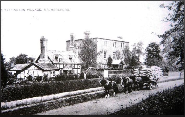 Tarrington Village 1906